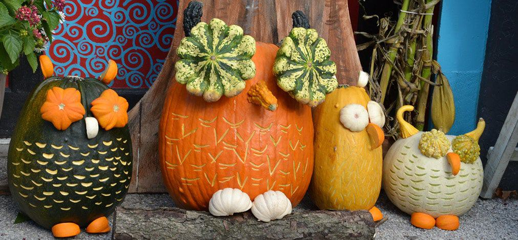 Pumpkin Patch Festival and Ephraim lodging